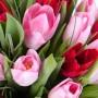 25 красных и розовых тюльпанов