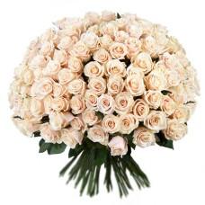201 белая роза